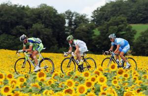 Tour_de_France_2014